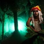 The Inca's Doom