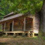 The Mystic Cabin