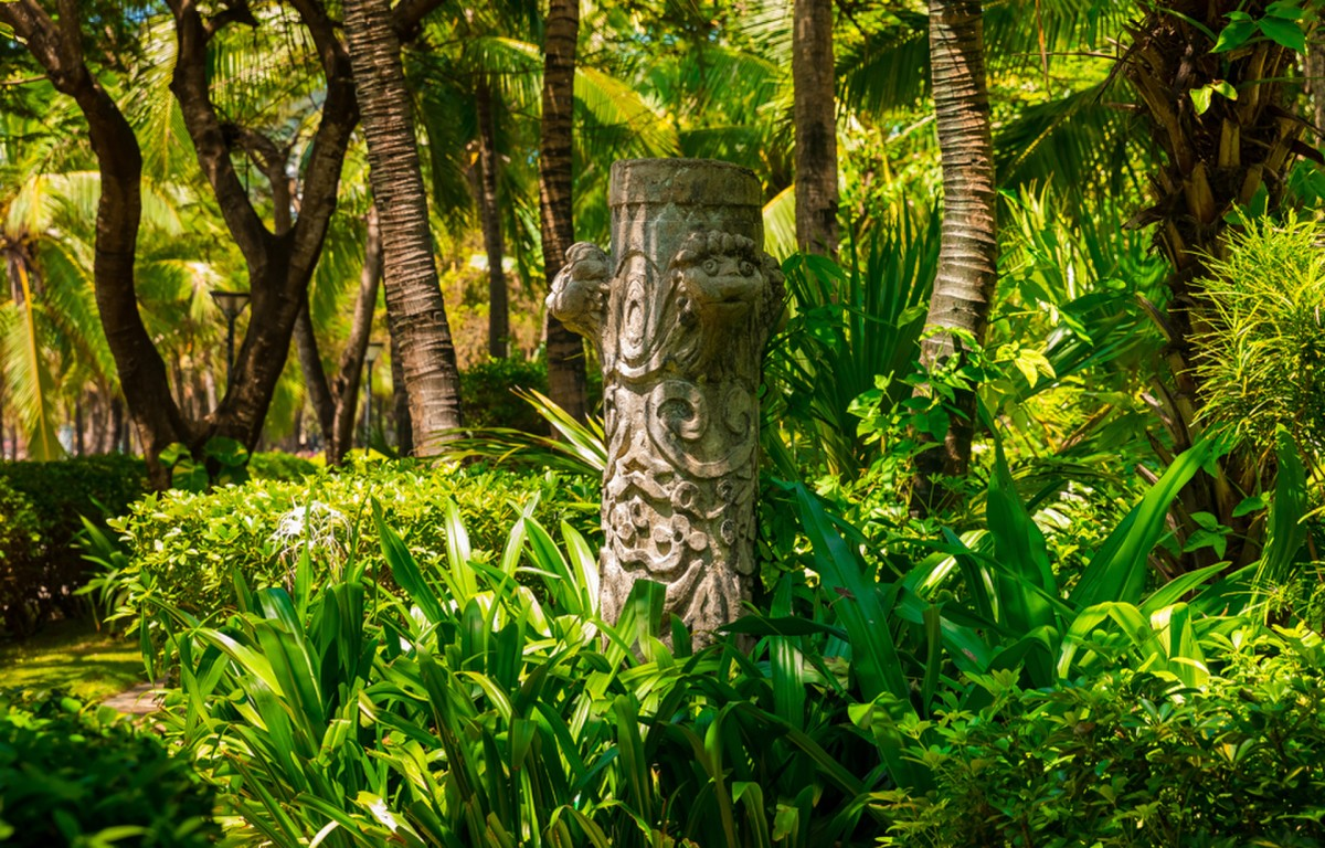Jungle Avontuur