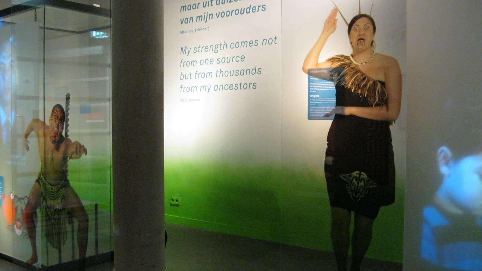 Rijksmuseum Volkenkunde | Tentoonstelling Maori