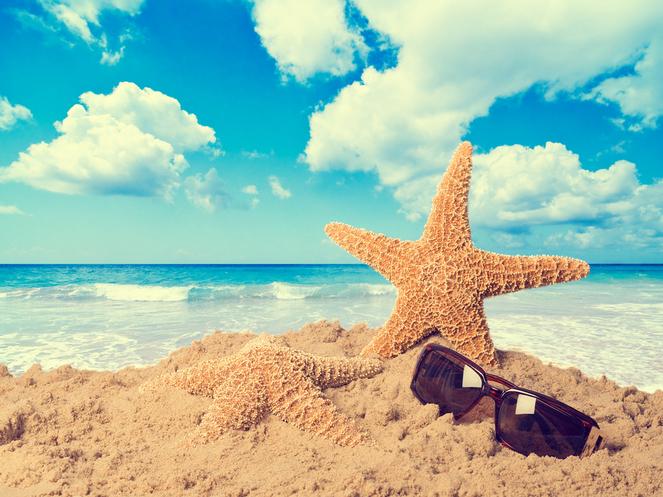Bereikbaarheid tijdens vakantieperiode