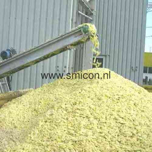 Potatoes supplies for processing Smicon conveyor belt